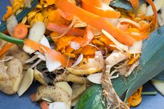 Kitchen vegetable waste for compost royalty free stock photos