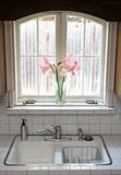 Kitchen Window Royalty Free Stock Photo