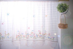 Kitchen windows dressed with lace curtain and flower pot stock images
