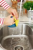 Kitchen. Woman washes tea cup Royalty Free Stock Image