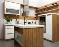 Kitchen in wood Royalty Free Stock Photo