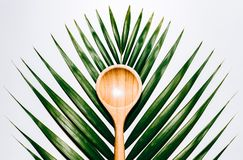 Tropical Spoon. Kitchen Wood spoon in tropical leaf stock photos