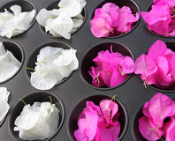Kitchenware with flowers Royalty Free Stock Photography
