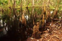 Kitching Creek Stock Photo