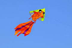 Kite. Colorful kite in the wind Stock Image