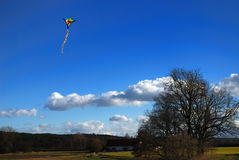 Kite above tree. A funny kite flying high above a tree. Sunny day, blue sky, some clouds stock photo
