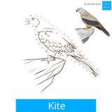 Kite bird learn birds coloring book vector Stock Photos
