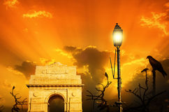 Kite birds at india gate sunset sunrise Royalty Free Stock Photos