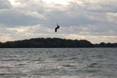 Kite Boarder Jumps above Trees Royalty Free Stock Photo