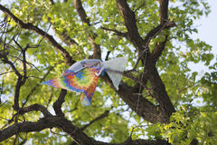 Kite caught in a tree Stock Image