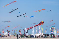 Kite Competition Royalty Free Stock Photo