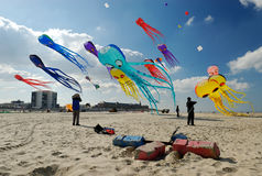 Kite competition Royalty Free Stock Photos