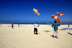 Kite competition in San Vito lo Capo beach, Sicily Royalty Free Stock Photography
