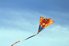 Kite-Face Stock Image