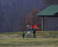 Kite & family. Three brothers working together to fly kite at local park Royalty Free Stock Photos