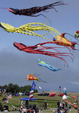 Kite Fest 03 Stock Photo