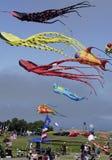 Kite Fest 03. Oakland Kite Festival Stock Photo