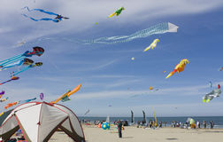 Kite festival. Colored kites in the beach at International kite festival of Cervia - Italy Stock Photography