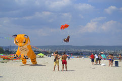 Kite festival on the beach Royalty Free Stock Photo