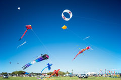 Kite Festival. Colorful and different kinds of kites flying and on display during the 2015 Kite Fest held in Redcliffe in Australia Stock Images