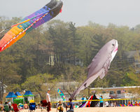 Kite Festival 2015 Grand Haven Michigan Stock Photos
