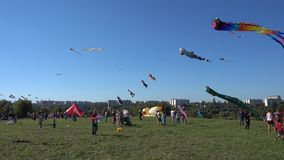 Kite festival in Moscow stock video