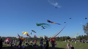 Kite festival in Moscow stock video footage