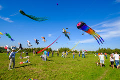Kite festival in Moscow Stock Images