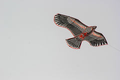 Kite festival: eagle Royalty Free Stock Image