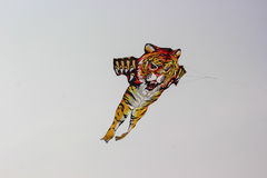 Kite festival tiger Stock Photography