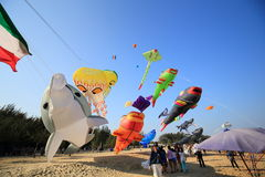 Kite Festival Royalty Free Stock Photo