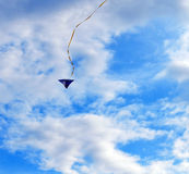 Kite fly in a sky Stock Photography