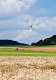 Kite flying. Couple of guys letting a huge cite fly on fields in front of forest stock photos