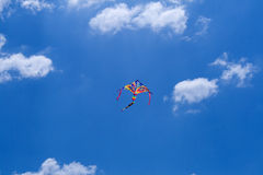Kite flying Stock Image