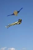 Kite Flying stock photos