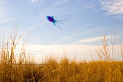Kite Flying on the Beach-2. A large kite in the shape of a squid, flies in the wind over a grassy dune on the beach at Cape May, New Jersey Stock Photo