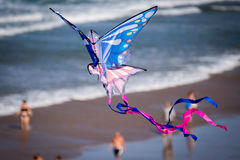 Kite flying on the beach Royalty Free Stock Images