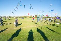 Kite flying day Stock Photos