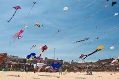 Kite flying festival Royalty Free Stock Photo