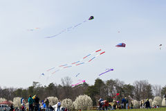 Kite Flying Frenzy. Kite flying. Taken during the seventh annual Kite Flying Frenzy at Sherando Park in Frederick County Virginia in April 2008. People having royalty free stock image