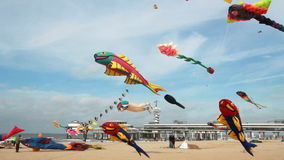 Kite flying in Holland stock video footage