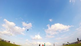 Kite Flying stock footage