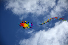 Kite flyng in the sky. Rainbow bug kite rlying in the sky Royalty Free Stock Photography