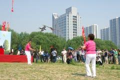 Kite game Royalty Free Stock Image