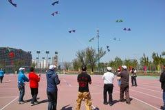 Kite game Royalty Free Stock Photo