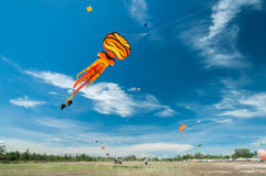Kite octopus. Fly activity color royalty free stock photography