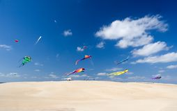 Kite party. Multicolor kites flying over sandy hill in bright sunny afternoon Stock Photography