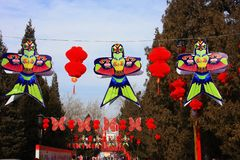 Chinese Spring Festival with Lantern on tree stock photos