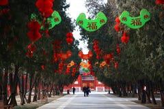 Chinese Spring Festival with Lantern kite royalty free stock photos