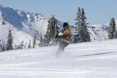 Kite Skiier Stock Photo